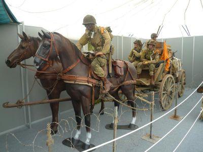 Expozice v nové hale u muzea DMC je tradičně kvalitní.